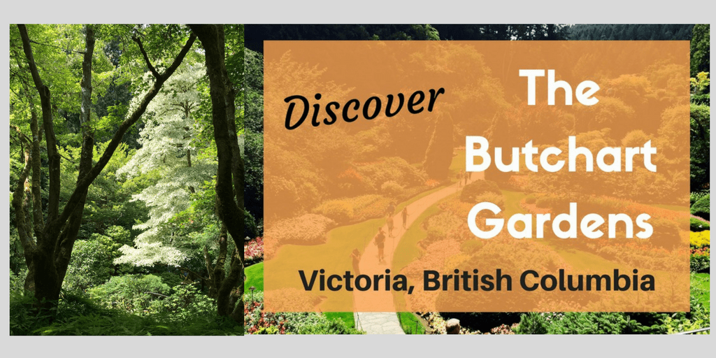 @socalfieldtrips's cover photo for 'Discover The Stunning Butchart Gardens in Victoria Canada'