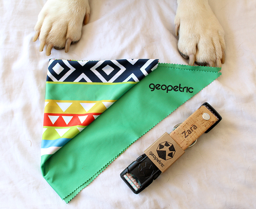 @stylish_paws's cover photo for 'Product Review: Geopetric Personalised Pet Products - Stylish Paws'