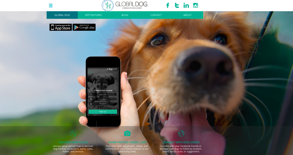 @stella_and_friends's cover photo for 'Global Dog App: For Dogs & Puppies'