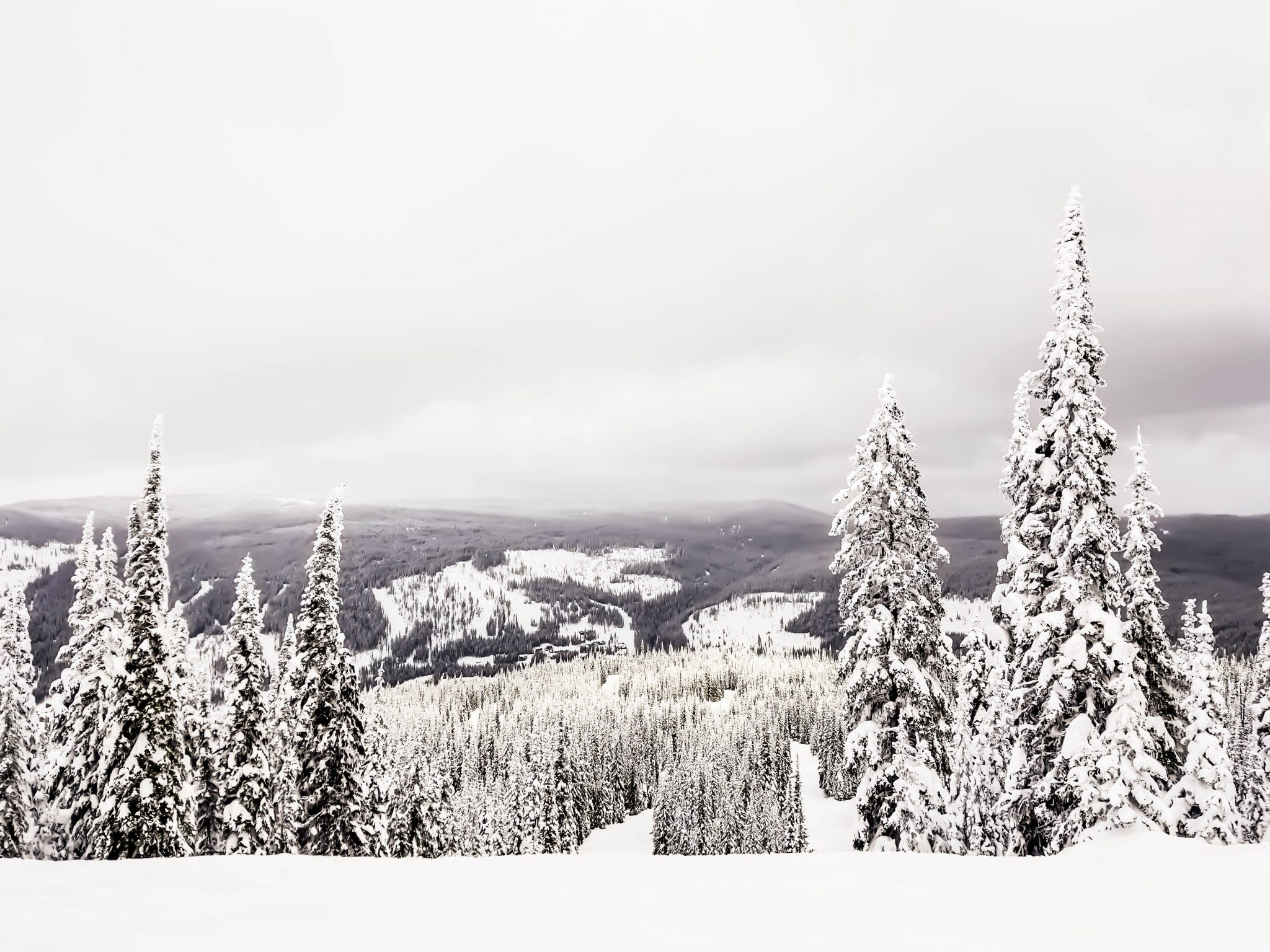 @theworldpursuit's cover photo for 'Ski Sun Peaks Resort • The Perfect Canadian Winter Destination'