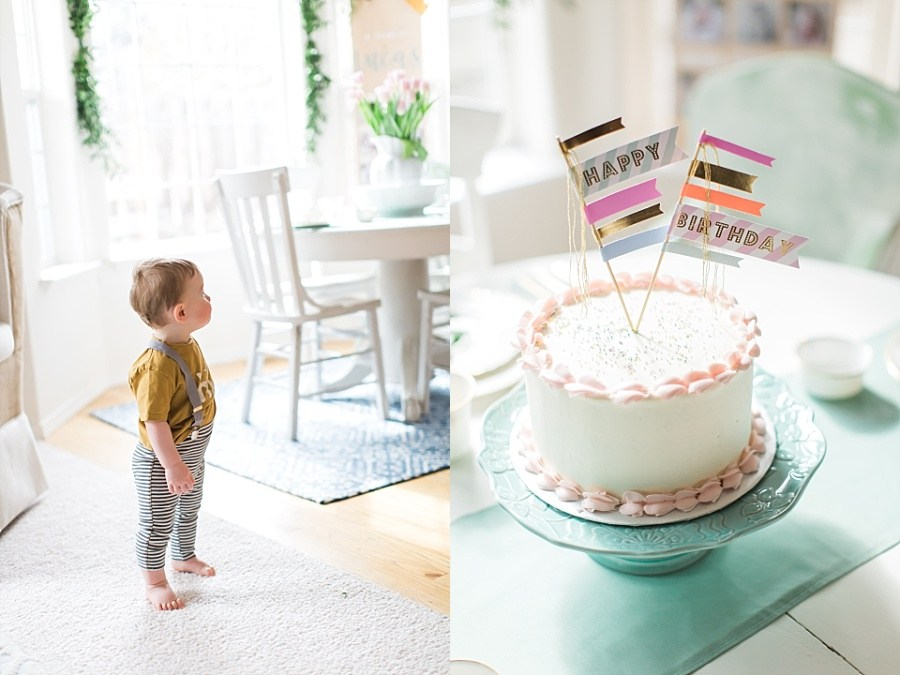 @nicoleconner's cover photo for 'Lucas's 1st Birthday Party | Nicole Conner Photography'