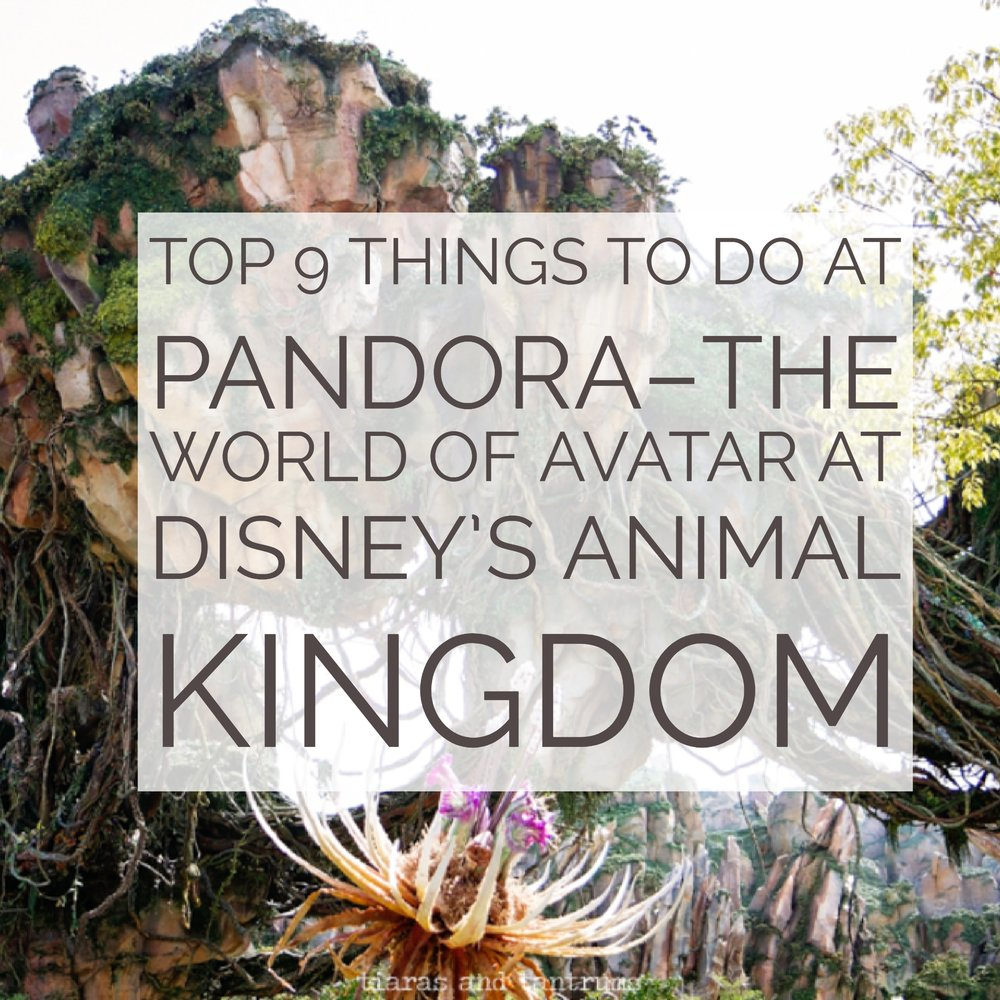 @tiarastantrums's cover photo for 'TOP 9 THINGS TO DO at Pandora–The World of Avatar at Disney's Animal Kingdom'
