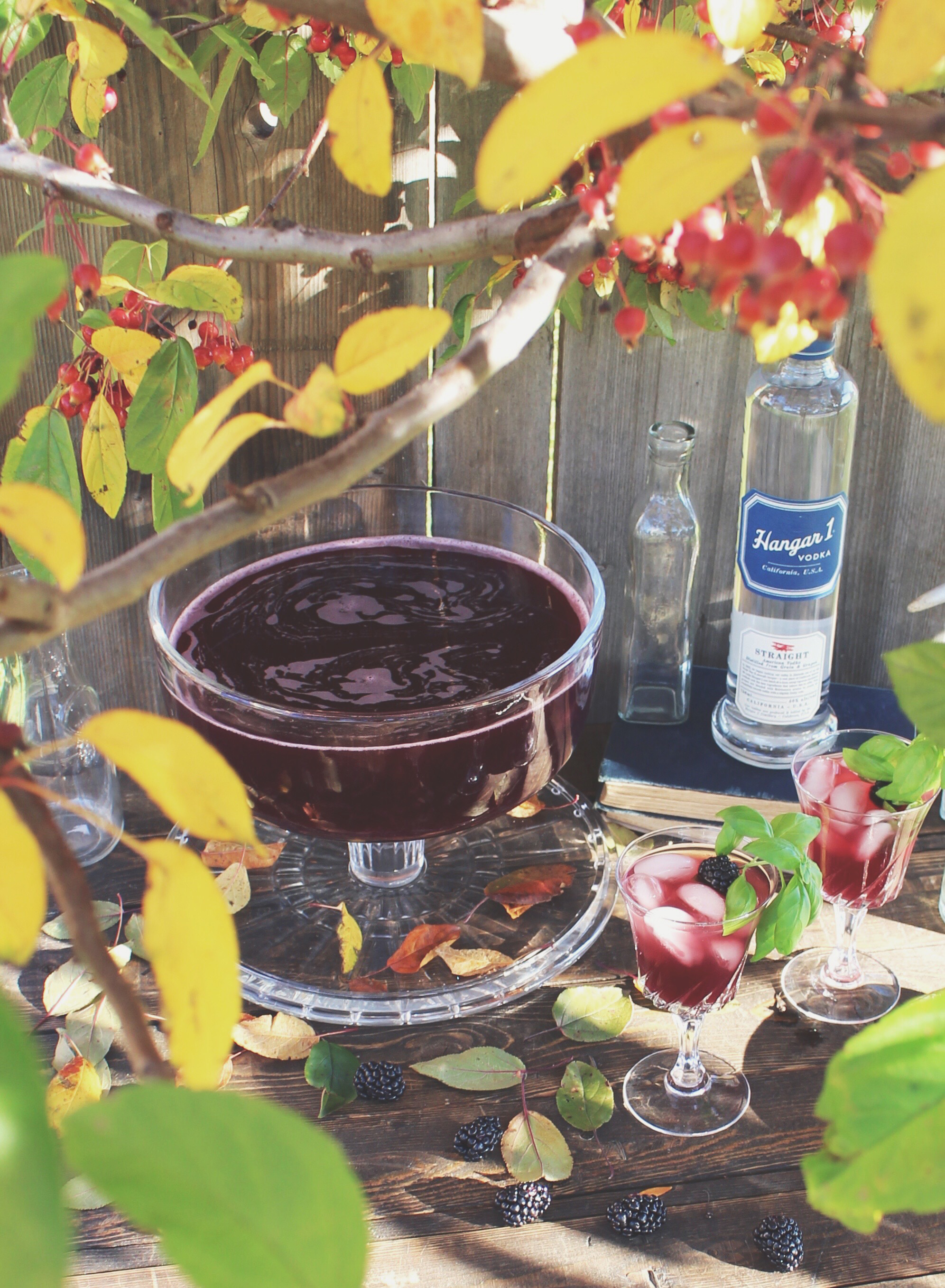 @theanastasiaco's cover photo for 'Blackberry Cran-Apple Punch Recipe | The Anastasia Co.'