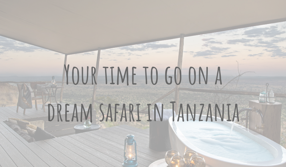 @clairesitchyfeet's cover photo for 'African Adventures | Your time to go on a dream safari in Tanzania'