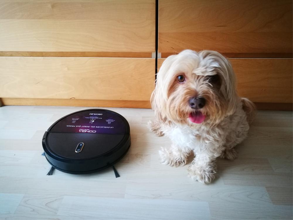@blogdeuma's cover photo for 'Conga serie 1090: el robot de limpieza perfecto para quien tiene perro'