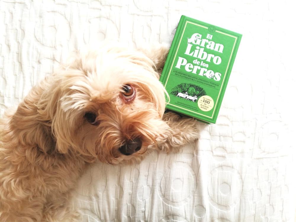 """@blogdeuma's cover photo for '""""El gran libro de los perros"""", un libro imprescindible para los amantes de los perros'"""