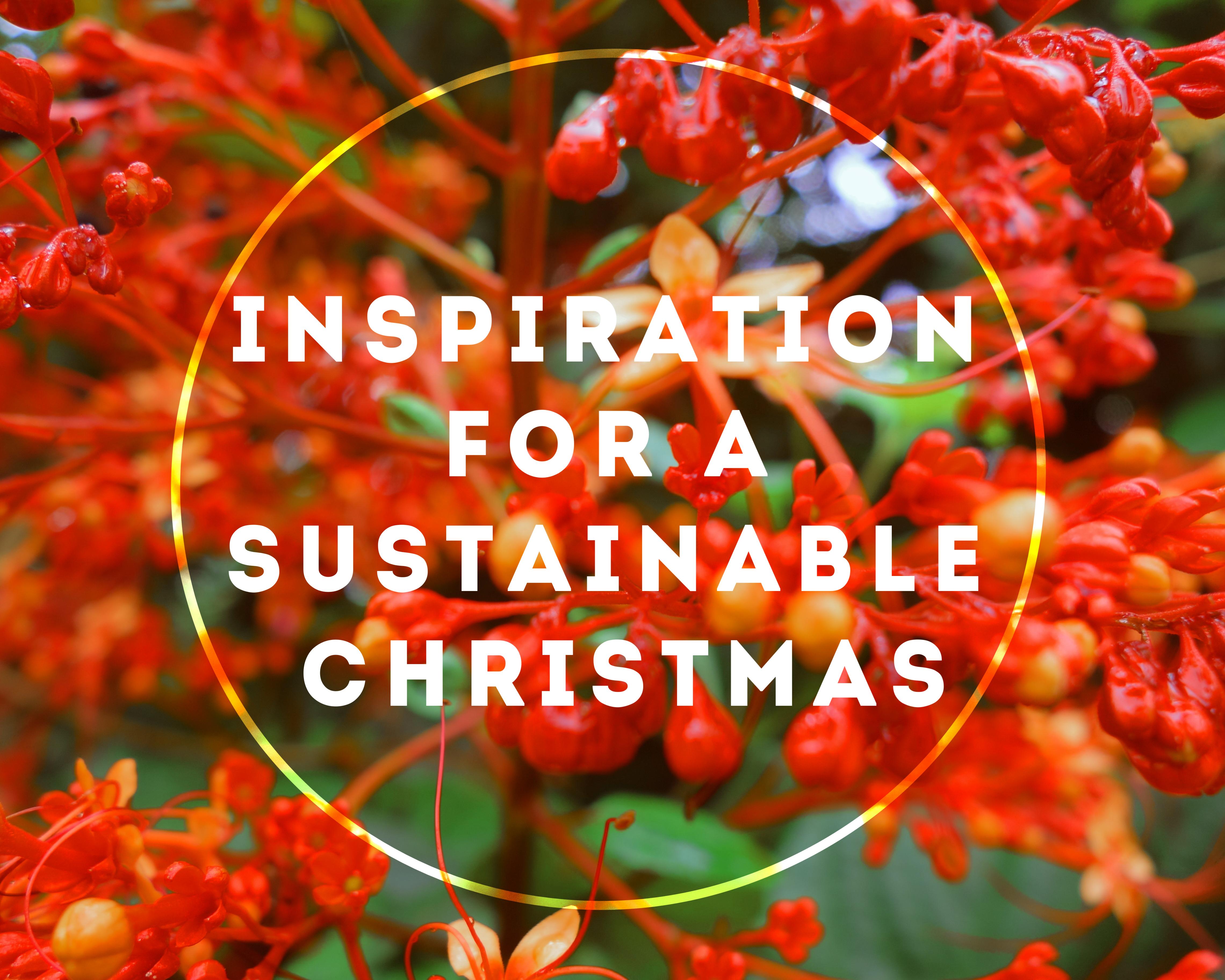 @minimalmeg's cover photo for 'Sustainable Christmas gifting | Making Minimal Movements - Blog'