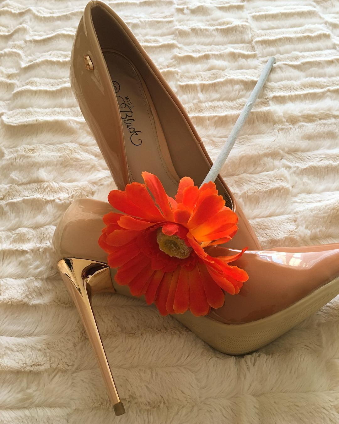 "@tashy_diamond's cover photo for 'Natasha Diamond 💎🇿🇦 on Instagram: ""@missblackza shoes make all my outfits; like rims for a car.  #missblackza #fashionista #fashion #shoesaddict #luxury #brandambassador…""'"