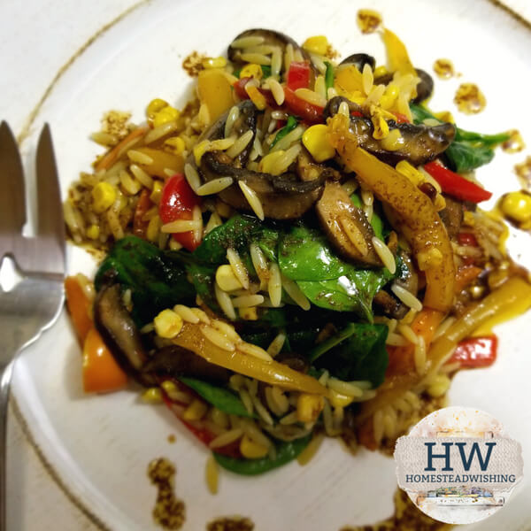 @homesteadwishing's cover photo for 'Mushroom Pasta Recipe - Roasted Bell Pepper and Portabella Orzo Pasta'