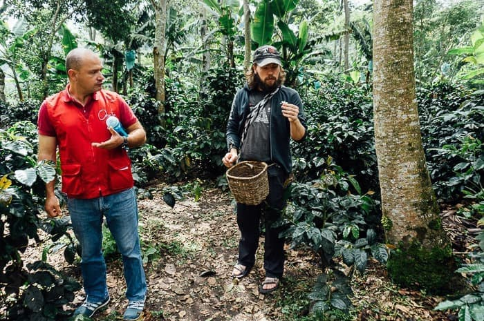 @desktodirtbag's cover photo for 'Where to Take a Coffee Farm Tour in Salento, Colombia'