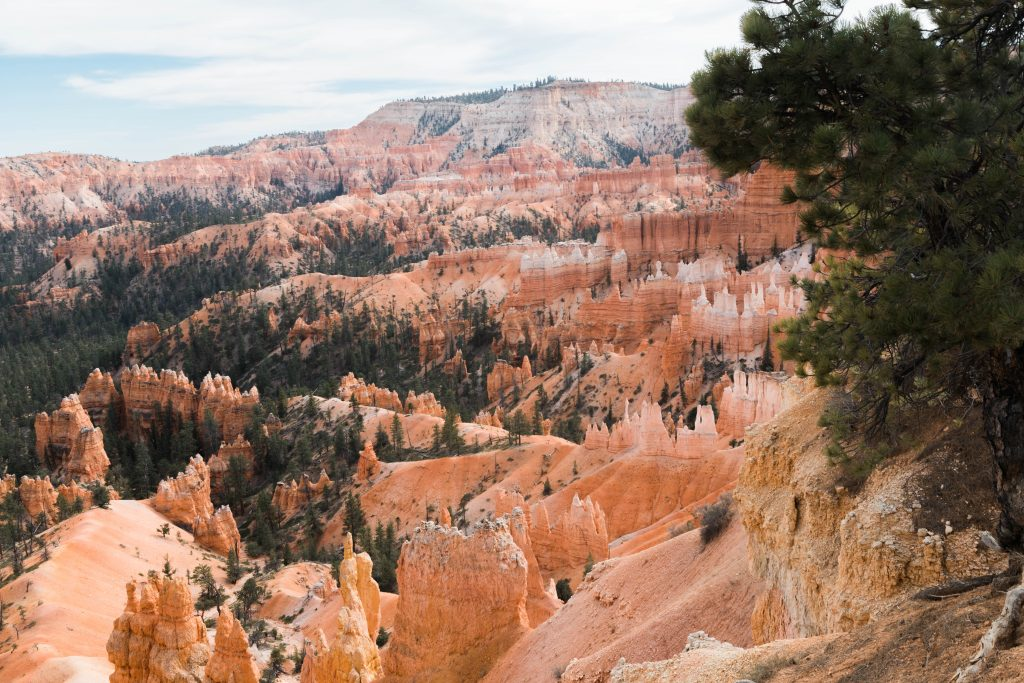@part.time.tourists's cover photo for 'Winter Visit to Bryce Canyon - parttimetourists.com'
