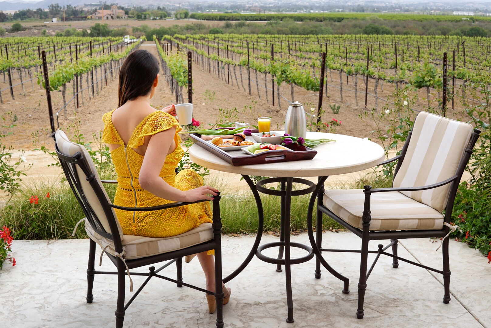 @sondrabarker's cover photo for 'Walk Off Your Patio And Into The Vineyards At This Beautiful Temecula Hotel'