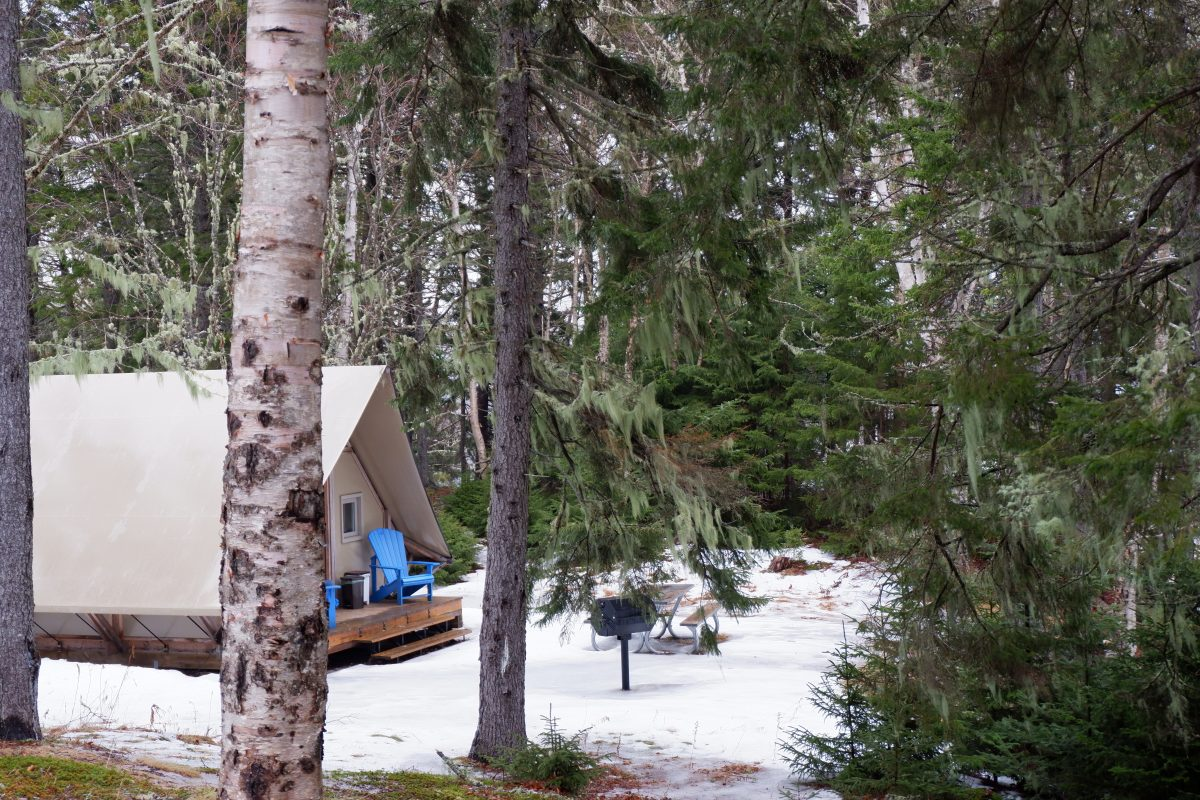 @dashboardliving's cover photo for 'Glamping at Fundy'