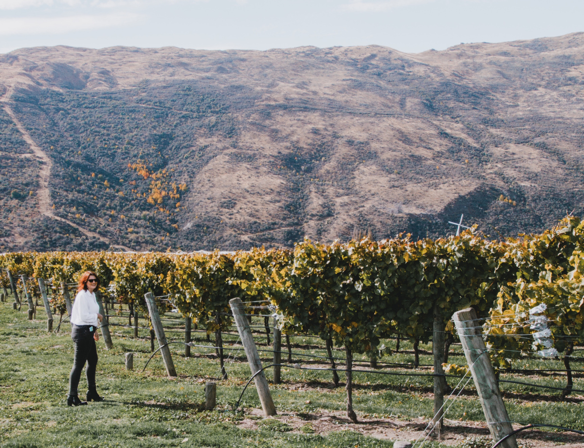 @floboniface's cover photo for 'Queenstown Wine Tasting With Altitude Tours'