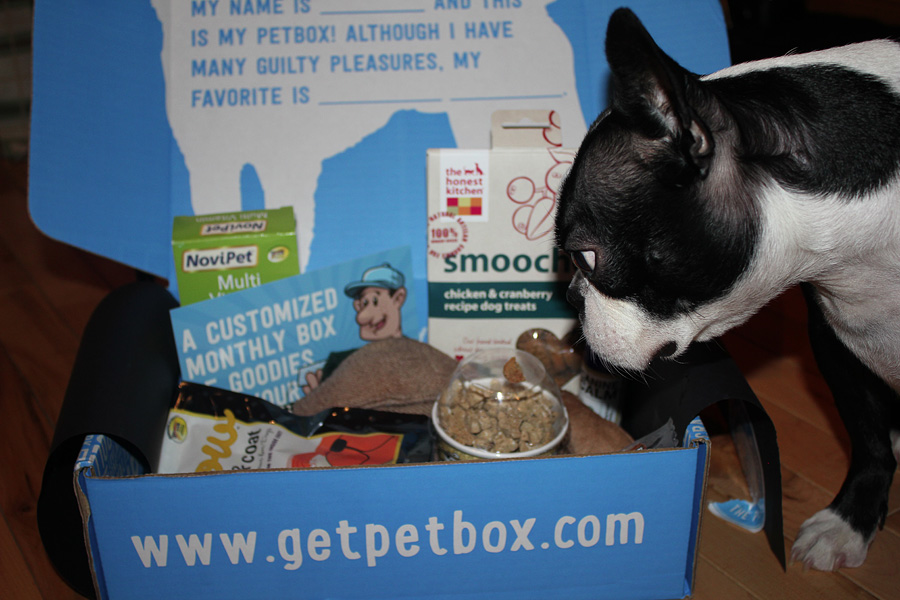 @bostonterrier.dogs's cover photo for 'PetBox - Customize a Monthly Box of Goodies for your Furiend and Save 20%!'
