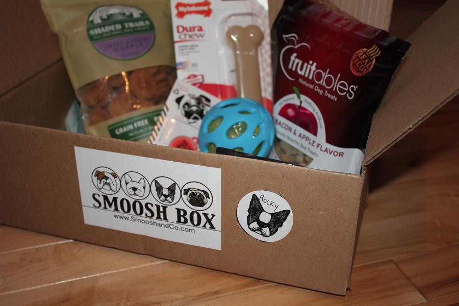 @bostonterrier.dogs's cover photo for 'Smoosh Box - A Monthly Box of Products that are Specifically Smoosh Face Dogs!'