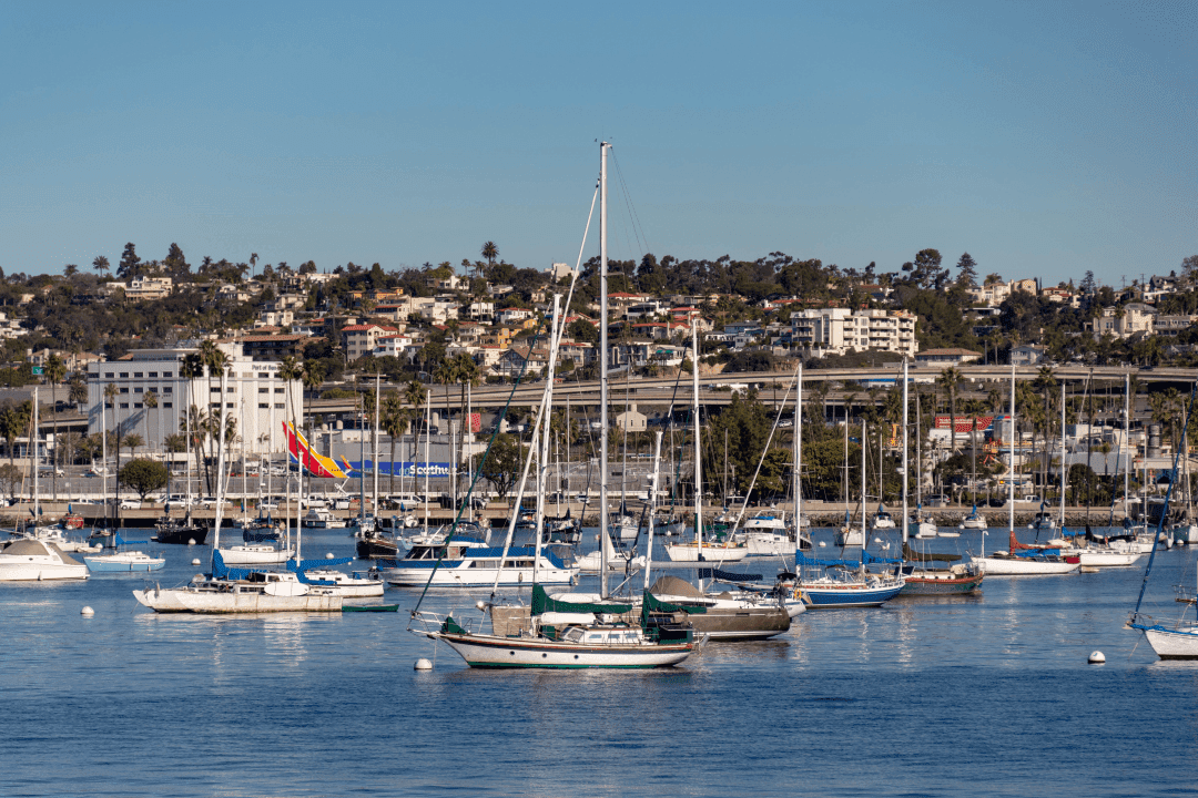 @thattexascouple's cover photo for 'Should You Take a San Diego Harbor Cruise?'