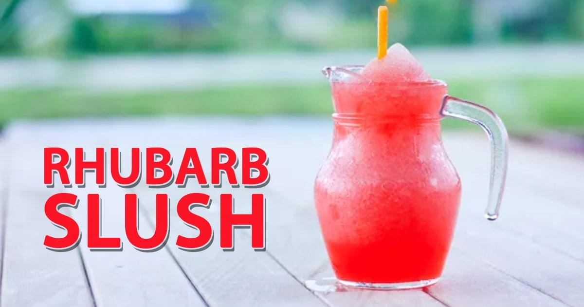 @slushiemachineguide's cover photo for 'Rhubarb Slush Recipe | Rubarb Slush for Adults and Kids!'