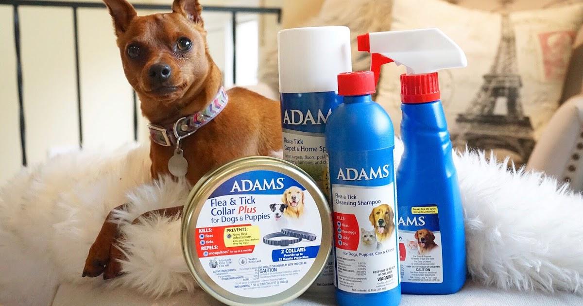 @danastargazertruitt's cover photo for 'Spring Cleaning with Adams Flea & Tick!'