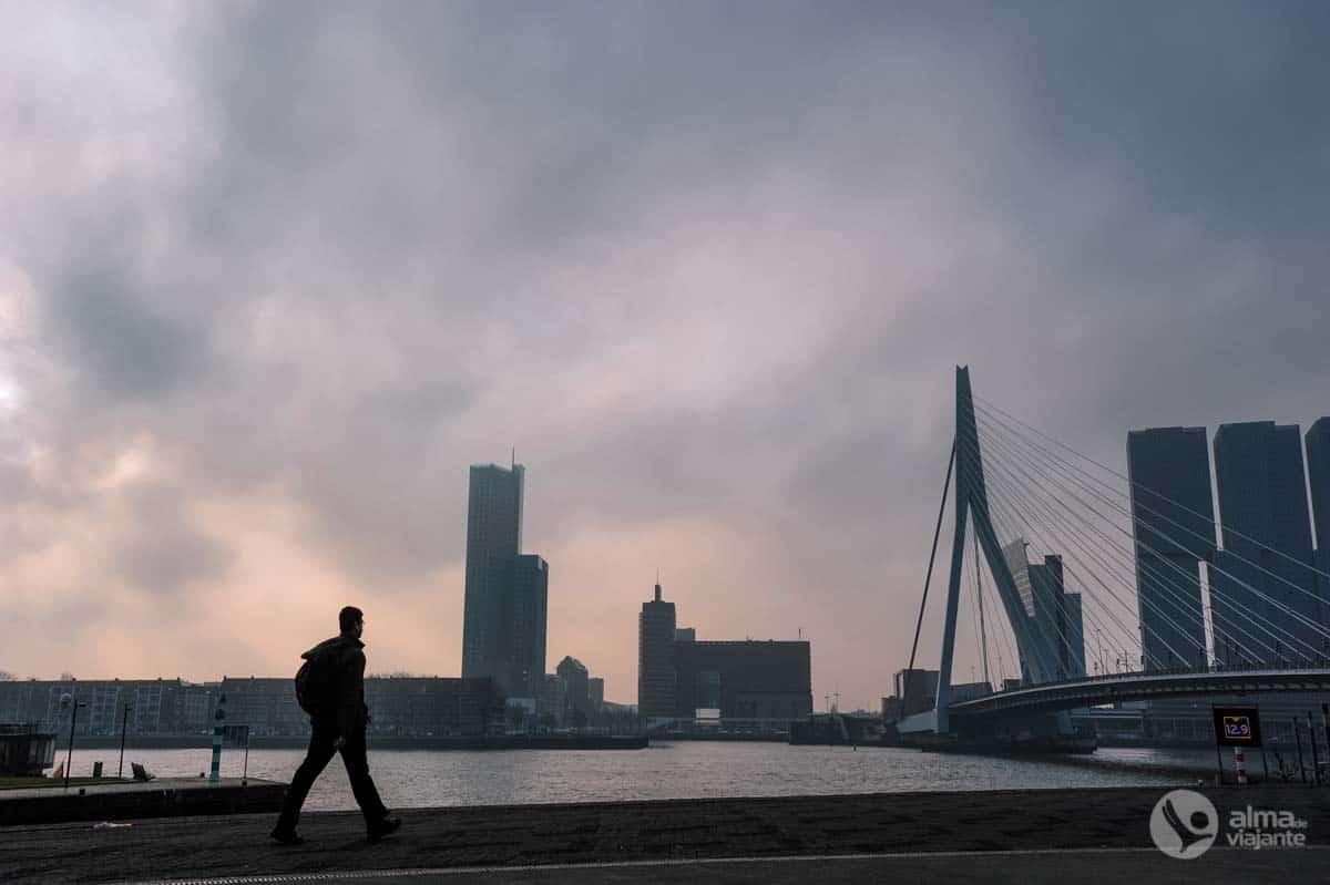 @almadeviajante_oficial's cover photo for 'O que fazer em Roterdão, uma cidade apaixonada por arquitetura | Alma de Viajante'