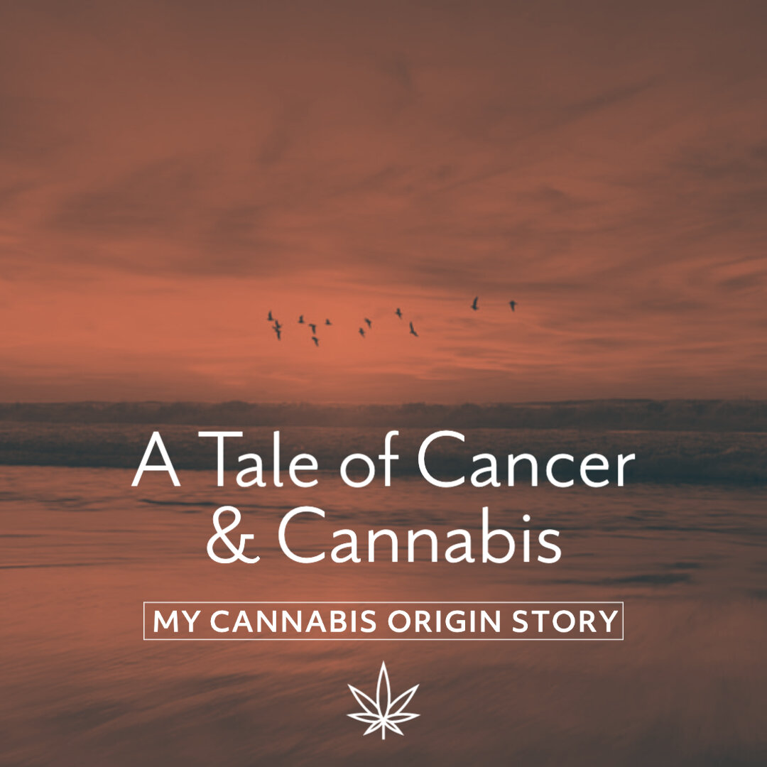 @sjohnsonartist's cover photo for 'A tale of cancer and cannabis — Since Day 3'