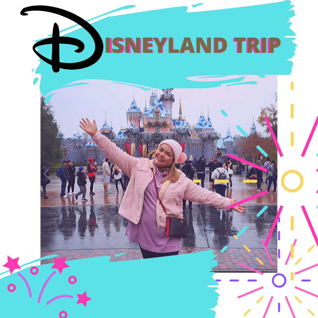 @awmyposh's cover photo for 'OUR DISNEYLAND TRIP... AFTER MORE THAN A DECADE • AW my Posh!'