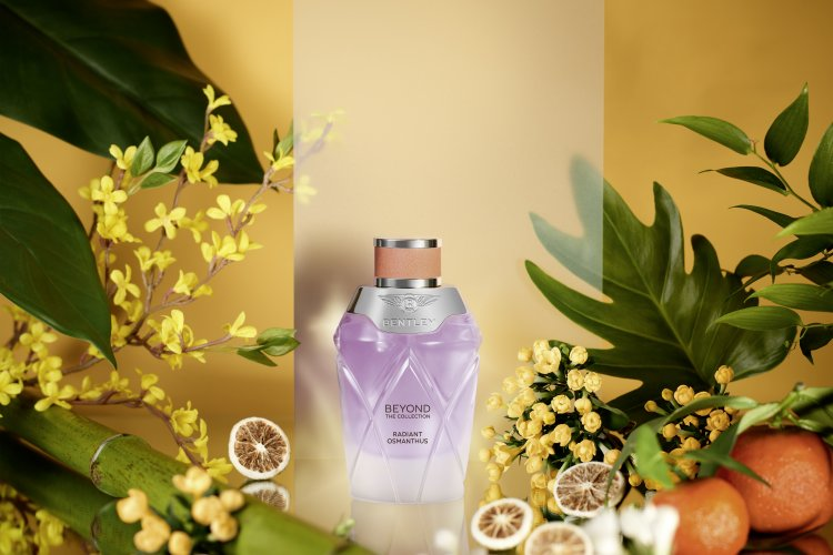 @evlear's cover photo for 'A trio of fragrances for her'
