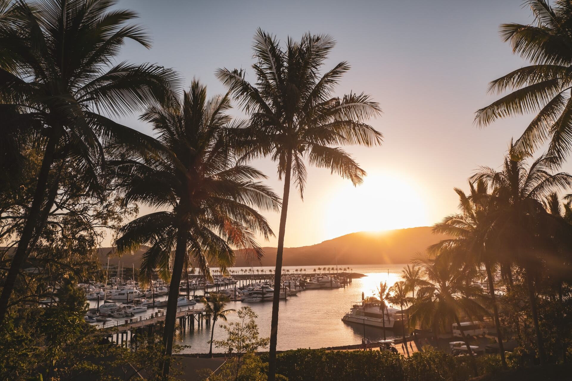 @exploreshaw's cover photo for 'Best Things To Do On Hamilton Island | Explore Shaw'