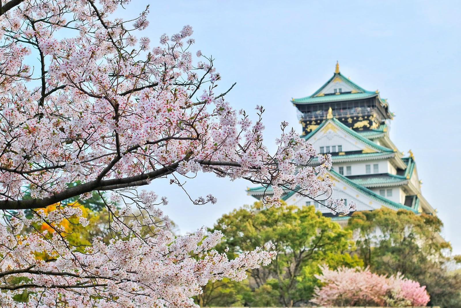 @entaconadas's cover photo for 'Cenas temáticas: Viajando a Japón - Entaconadas'